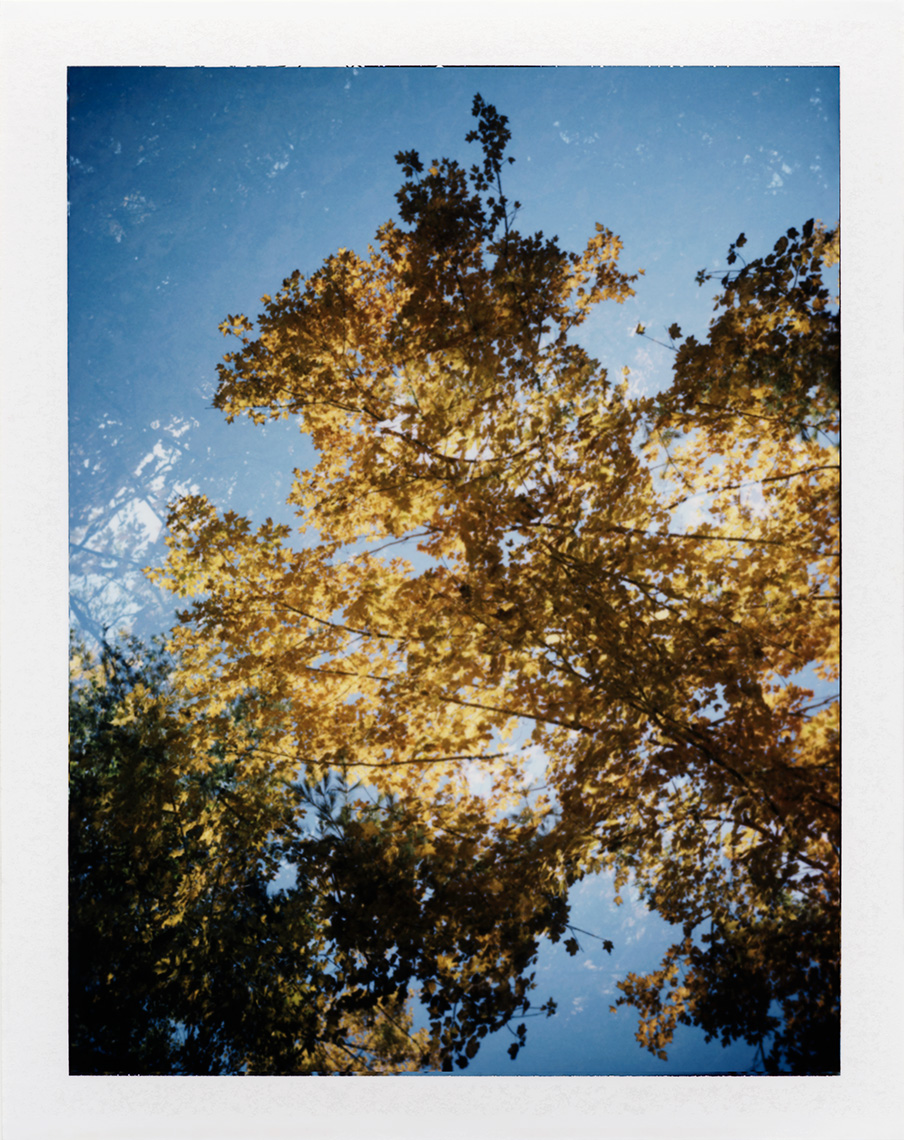 eric_martin_photography_kalidescopic-fall_000