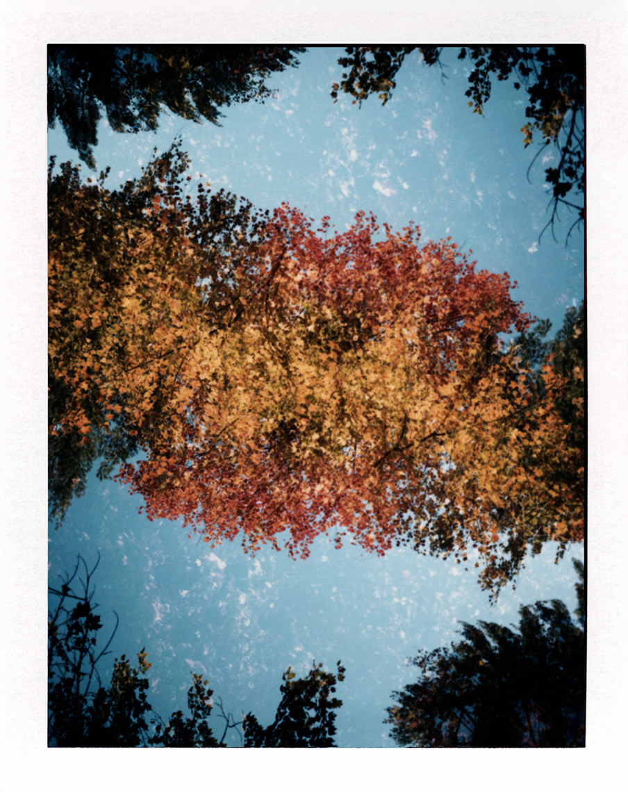 eric_martin_photography_kalidescopic-fall_002