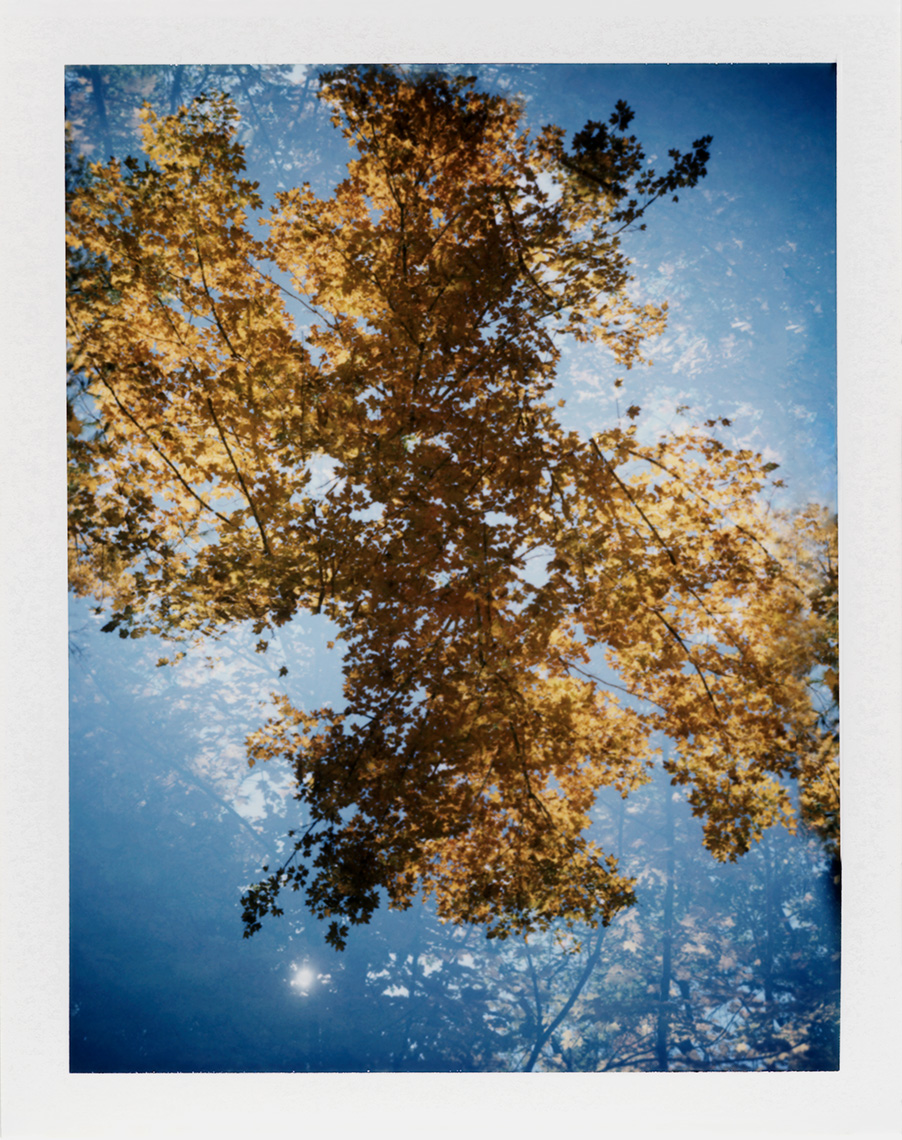 eric_martin_photography_kalidescopic-fall_014