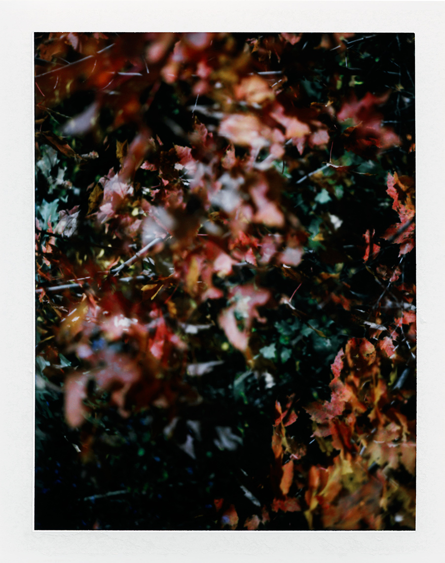 eric_martin_photography_kalidescopic-fall_025